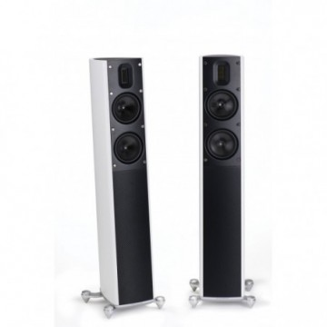 SCANSONIC-MB 2.5 Colunas Chao